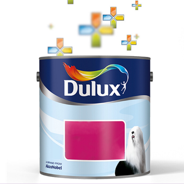 Picture of Dulux Paint Mixing Service