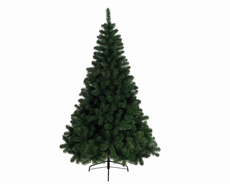 Picture of CHRISTMAS TREE ONTARIO PINE 7FT