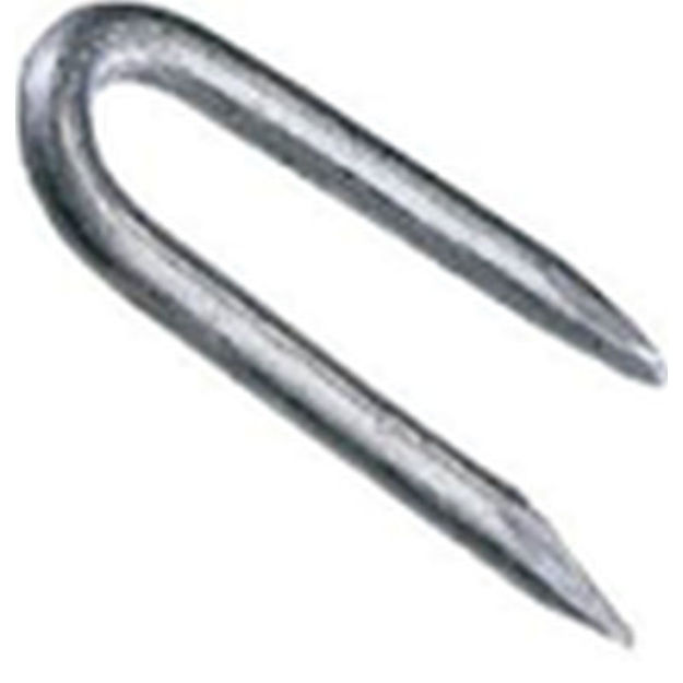 Picture of GALVANIZED STAPLES - 30mm (120gsm)
