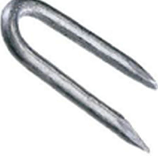 Picture of PANEL PINS - STEEL 25mm (75gsm)